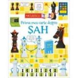Prima mea carte despre SAH - Katie Daynes