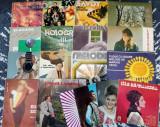 Vinyl, Viniluri Muzica Populara, Usoara, Slagare, Pop, Discuri Pickup, VINIL, electrecord