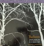 Beethoven, Sonatele pentru pian nr 8 Patetica si 14 Sonata lunii, disc vinil