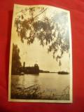 Ilustrata Delta Dunarii , anii '50