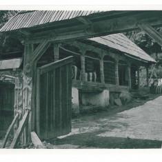 519 - MARAMURES, Casa taraneasca, Romania - old postcard, real PHOTO - unused, Necirculata, Fotografie