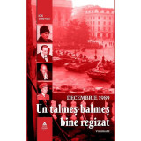 Decembrie 1989. Un talmeș-balmeș bine regizat (volumul II)
