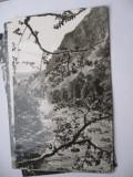 Carte postala - Valea Putnei la Lepsa, Circulata, Fotografie