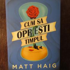 Cum sa opresti timpul - Matt Haig, Nemira, 2018