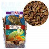 Viermi de mătase uscați - 200ml
