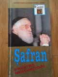 Safran Printre Nemuritori - Manase Radnev Ticu Goldstein ,287191