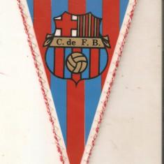 Fanion F.C.Barcelona