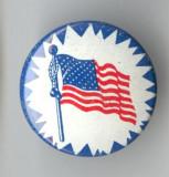 Insigna veche USA - America Steag - SUA