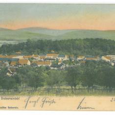 4811 - SAVARSIN, Arad, Panorama, Romania - old postcard - used - 1904