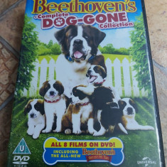 Beethoven 1-8 Boxset DVD Complete Collection Subtitrat Romana
