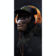 Husa Personalizata SONY Xperia XA2 Hip Hop Monkey
