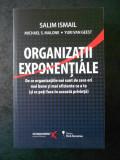 SALIM ISMAIL, MICHAEL S. MALONE, YURI VAN GEEST - ORGANIZATII EXPONENTIALE