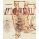 Anatomia trunchiului - Ludovic Seres-Sturm, Klara Brinzaniuc, Cosmin Nicolescu