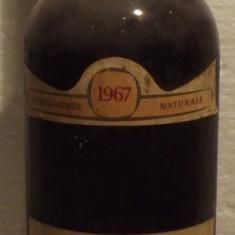 88 -VIN sassella doc, pellizzati, recoltare 1967 cl 72 gr 12,5