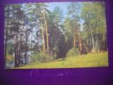 HOPCT 60360 IN IMPREJURIMI  MOSCOVA RUSIA  -CIRCULATA