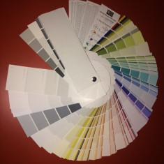 Paletar culori NCS Cascade 980