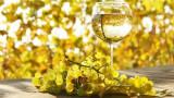 🍇🍷 Vand vin natural.