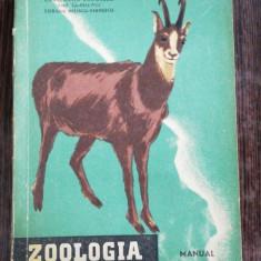 ZOOLOGIE - CONSTANTIN BOGOESCU /EMIL SANIELEVICI/CORALIA NITESCU -VERNESCU