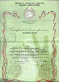 AMS* - CERTIFICAT DE BUNA APRECIERE IN SERVICIUL MILITAR, 1983 VATRA DORNEI - SV