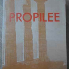 PROPILEE - CONSTANTIN CIOPRAGA