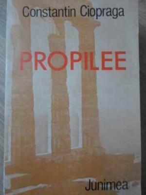 PROPILEE - CONSTANTIN CIOPRAGA foto