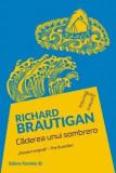 Caderea unui sombrero/Richard Brautigan, Paralela 45