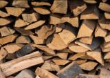 Tai lemne cu drujba