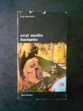 JURGIS BALTRUSAITIS - EVUL MEDIU FANTASTIC