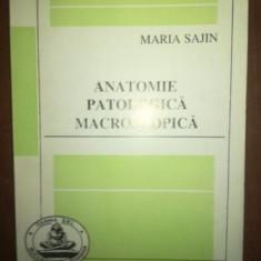Anatomie patologica macroscopica- Maria Sajin