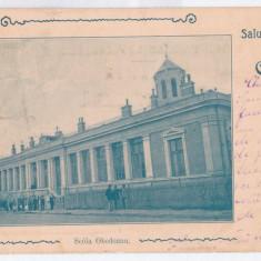 3752 - CRAIOVA, School Obedeanu, Litho, Romania - old postcard - used - 1901, Circulata, Printata
