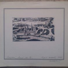 Timisoara, dupa o stampa de secol XVII// gravura
