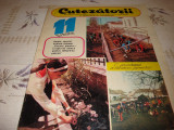 Revista Cutezatorii - nr 11 din 1981