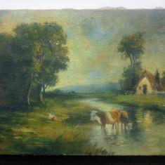 Tarancuta cu vacile la rau//ulei pe panza, Constion, Costion, Constantin Ionescu