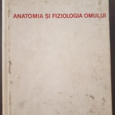 ANATOMIA SI FIZIOLOGIA OMULUI - Ranga, Exarcu