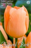 Lalele Apricot Beauty
