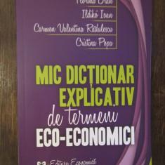 MIC DICTIONAR EXPLICATIV DE TERMENI ECO -ECONOMICI