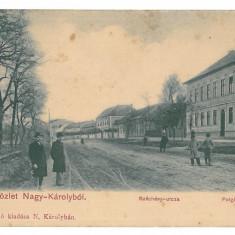 4734 - CAREI, Satu-Mare, Litho, Romania - old postcard - unused