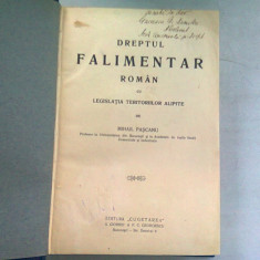 DREPTUL FALIMENTAR ROMAN CU LEGISLATIA TERITORIILOR ALIPITE - MIHAIL PASCANU