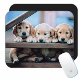 Labrador : Cadou Mouse pad : Caine Animal de companie Animal Cațeluș Canin Animale de companie Caini, Generic