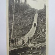 Carte postala(foto Adler Oscar/Brasov)Comandău(Covasna)-Funicular,exp.forestieră, Necirculata, Printata, Comandau