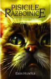 Pisicile Razboinice. Vol.11. Amurg, ALL