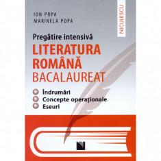 Pregatire intensiva. Literatura romana - BACALAUREAT. Indrumari, concepte operationale, eseuri - Ion Popa, Marinela Popa