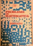 I. Petrica - Probleme de matematica pentru gimnaziu, 1985