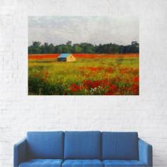 Tablou Canvas, Lan de Maci - 40 x 50 cm