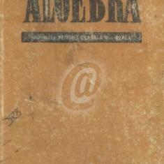 Algebra. manual pentru clasa a X-a Reala (1965)