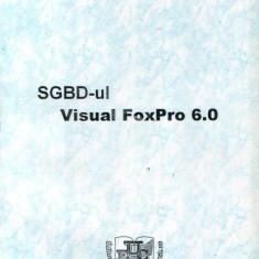 SGBD-ul Visual FoxPro 6.0