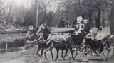 Timis Buzias Ferencz Jozsef vizita din 1890