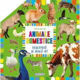 Carte pop-up - animale domestice
