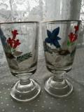 Pahare din sticla foarte groasa pictate