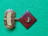 Insigna Pionier Comandant Instructor